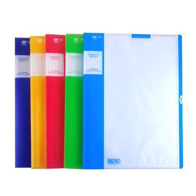 UV 클리어 파일 10 / 파일