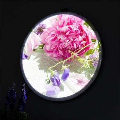 nr166-LED액자25R_탐스러운모란꽃