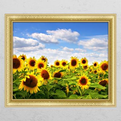 cl476-구름가득해바라기꽃밭_창문그림액자