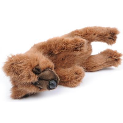 [가격인하] 5351번 잠자는곰 Sleepy Bear Brown/35cm.L