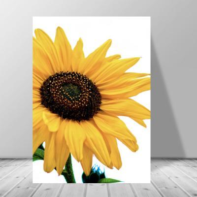 카페인테리어 황금 해바라기꽃그림 캔버스 액자3