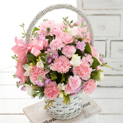 FN1120 참고마운당신(꽃바구니,생일,기념일,꽃배달)