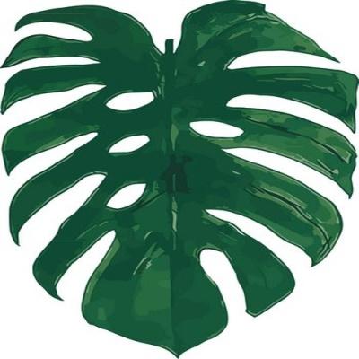 [DIY명화]Q3081 Leaf(잎) size 40*50cm
