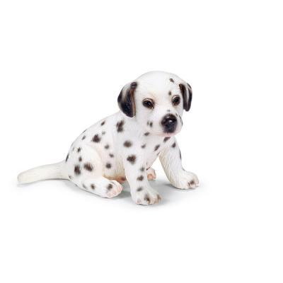 앉아있는 달마시안 강아지
