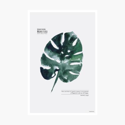 보타닉가든 포스트카드 엽서 - Monstera