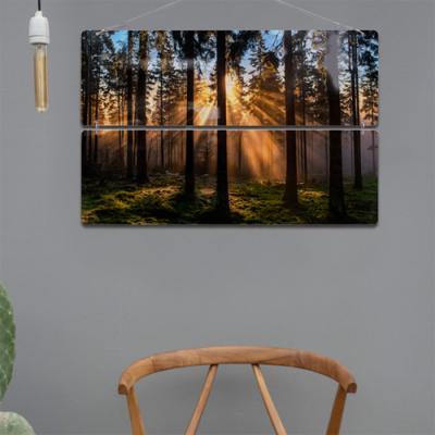 nl212-멀티아크릴액자_햇살가득한숲(2단대형)