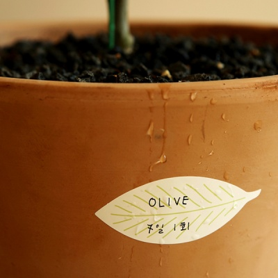 네임 스티커 - 02 Leaf