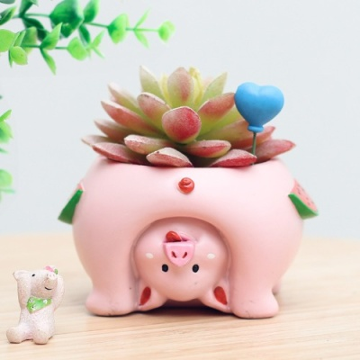 ROOGO 루고화분 거꾸로 보는 세계 돼지