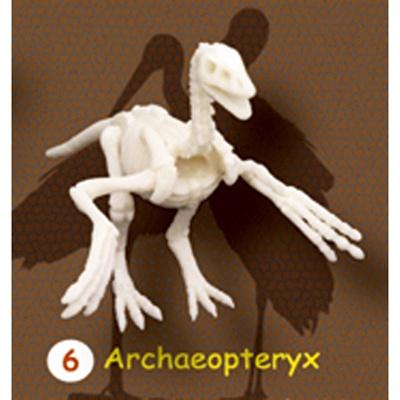 시조새뼈화석발굴 - 아르케오프테릭스