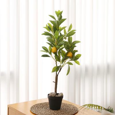 조화나무 레몬나무 화분세트 고퀄리티 인조나무