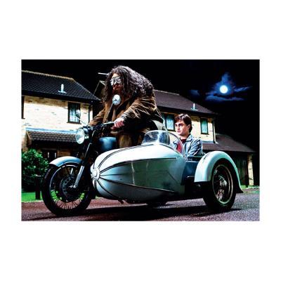 해리 포터 홀로그램 엽서 9:해그리드와 해리 포터