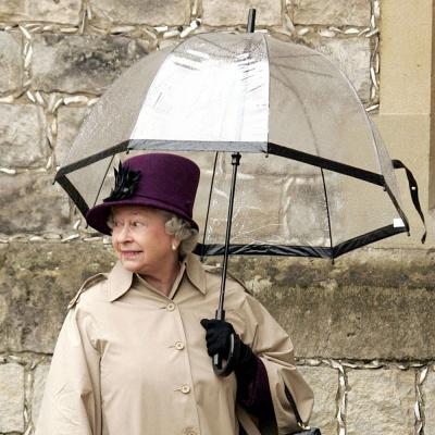 펄튼 투명 돔우산 장우산 버드케이지-1 birdcage-1