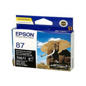 엡손(EPSON) 잉크 C13T087190 / NO.87 / PB / Stylus Photo R1900