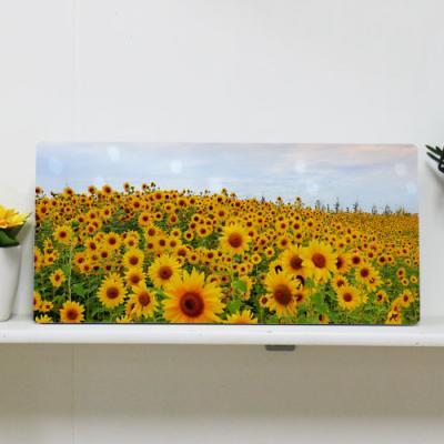 da503-폼아크릴액자38CmX18Cm_노을과해바라기꽃밭