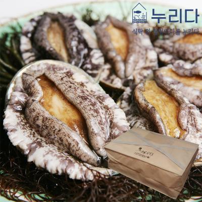 누리다 완도 활전복 선물세트 1kg 9-10미(부직포포장)