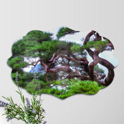 af469-폼아크릴액자58CmX38Cm엔틱A_굳건한풍수소나무