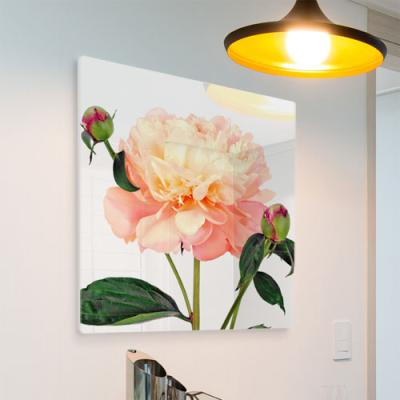 pi187-폼아크릴액자56CmX56Cm_아름다운풍수모란꽃