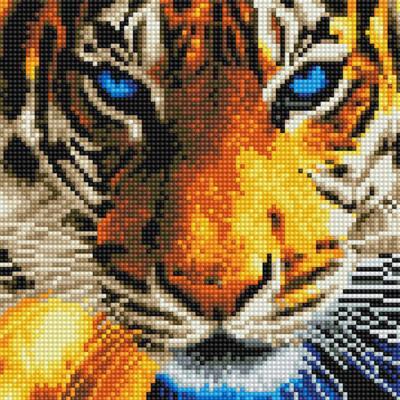 푸른 눈 호랑이 (캔버스형) 보석십자수 25x25