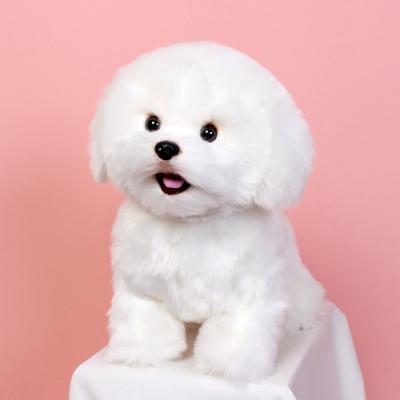 이젠돌스 위더펫 리얼 강아지 인형 장난감 비숑