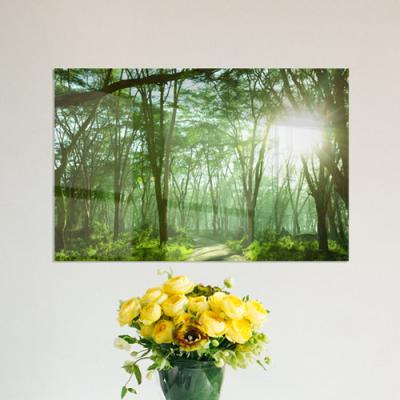 tc442-아크릴액자_화합과화목의상징숲(대형)