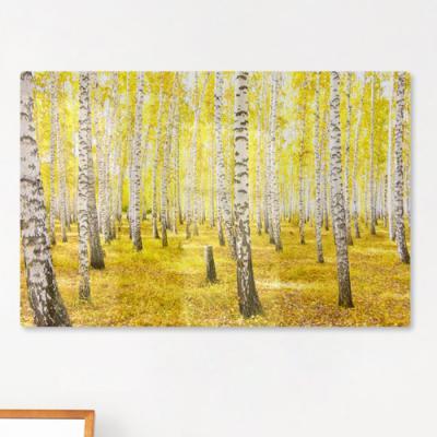 te179-폼아크릴액자58CmX38Cm_노란황금빛자작나무