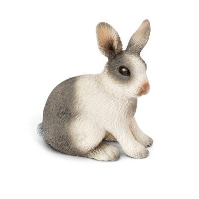 앉아있는 토끼