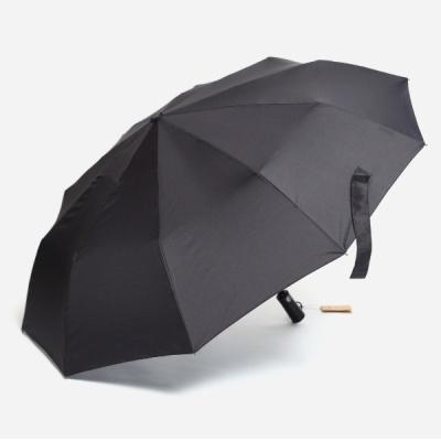 파라체이스 3239 10 패널 자동 3단 우산