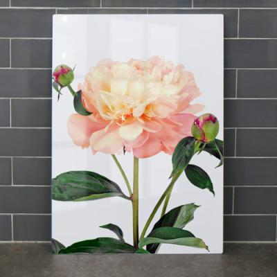 pi183-폼아크릴액자56CmX78Cm_아름다운풍수모란꽃