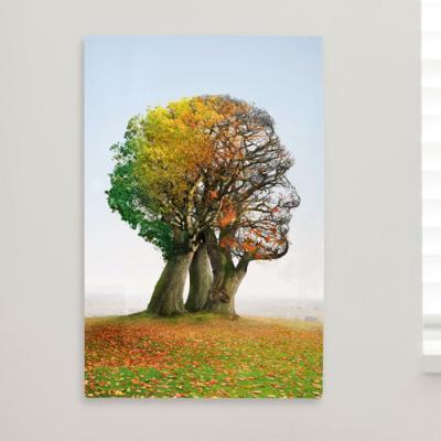 pi405-폼아크릴액자38CmX58Cm_사계절사람나무