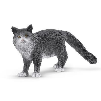 [슐라이히]메인쿤 고양이