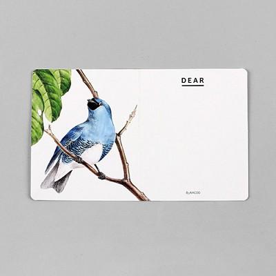 카드 세트-09 버드