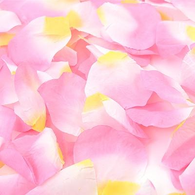 플라워샤워 이벤트꽃잎 (핑크)