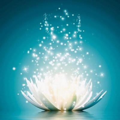 [보석십자수]HS19340 별빛내리는 연꽃 size 40x50cm
