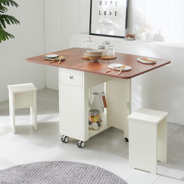 이동형 폴딩 테이블 식탁(LPM)+의자2개 KD470