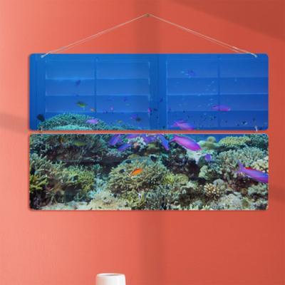 nl703-바닷속아름다운물고기들(2단대형)