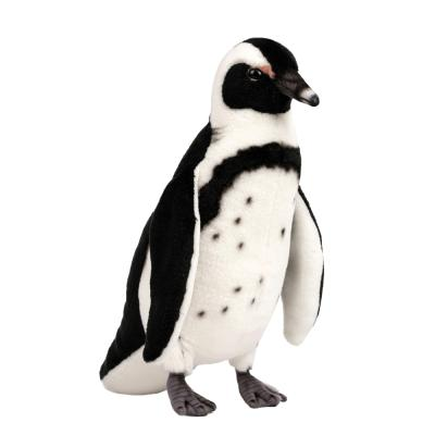 6971번 자카스펭귄 Black Footed Penguin/30cm.H