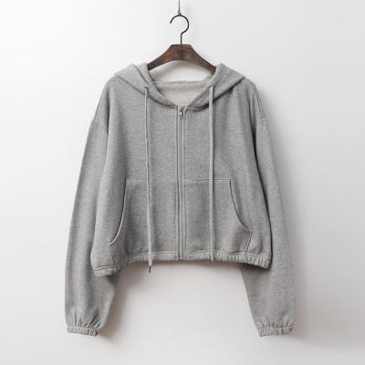 Day Hood Crop Zip-Up Jumper