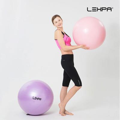 렉스파 YH-08 핑크 65cm 짐볼 피트니스볼