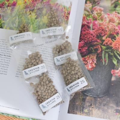 오가닉 친환경 유기비료 10포세트 식물 화분 영양제