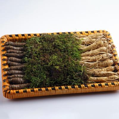 금산 울몸애 수삼더덕 선물세트 小 1kg(수삼+더덕)