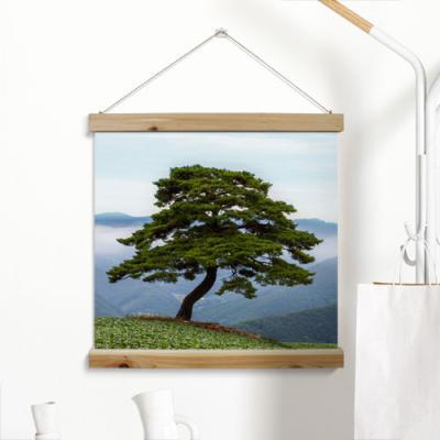 ah349-우드스크롤_60CmX60Cm-산위소나무