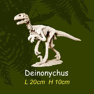 공룡뼈발굴(대형) - 데이노니쿠스