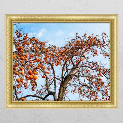 tl384-풍수재물복의감나무1_창문그림액자