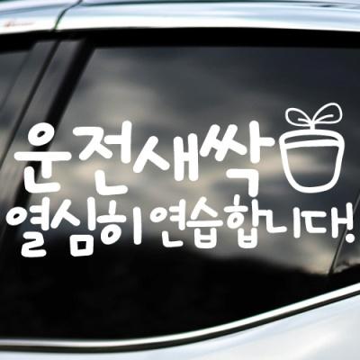운전새싹 - 초보운전스티커(NEW170)