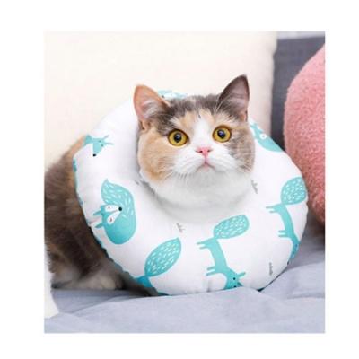 힐링타임 도넛 쿠션 넥카라 - 아쿠아 폭스 - M (sj)