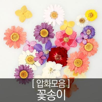 압화 꽃모음 - 꽃송이