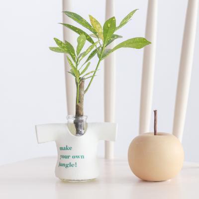 메이크정글 MANITTO NO.3 마니또팟 공기정화식물