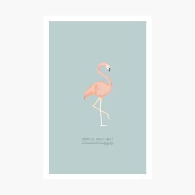 트로피칼 포스트카드 엽서 - Flamingo