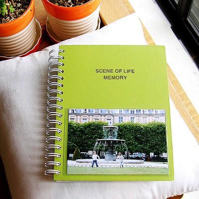 SCENE OF LIFE MEMORY - 4x6 Photo Album ver.01 엘로우 그린