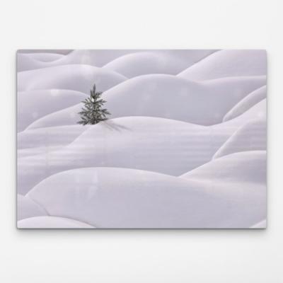 bf395-폼아크릴액자78CmX56Cm_나무한그루의겨울